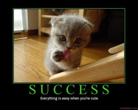 Great Picture of using what you have to Succeed Boundrylessly ~