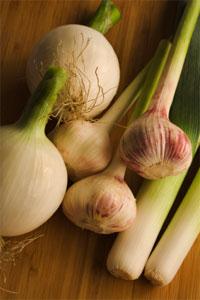 Garlic Family