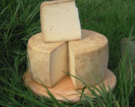 Grass Fed Dairy