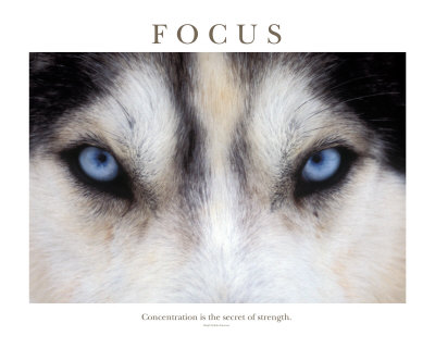 Focus is Power !!