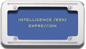 Intelligence Seeks Expression ~
