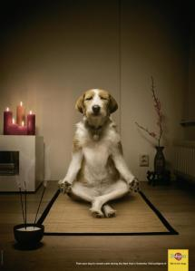 Everyone can Meditate ~ Sit ~ Breathe ~ Relax ~
