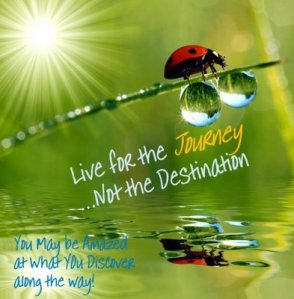 Live for the Journey and not just the Destination ~