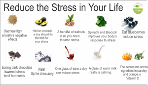 wholesome foods reduce stress