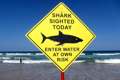 Port St. Johns in South Africa (world's deadliest beach for shark attacks) 2